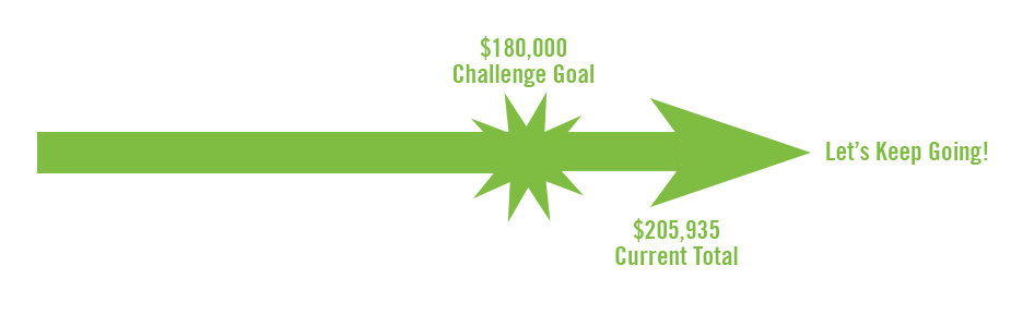 A bar graph showing $160,330 has been raised, with a goal of $180,000