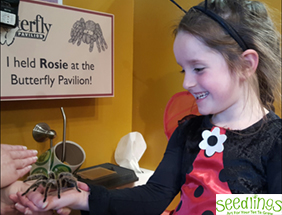 Seedlings: Bug Safari with the Butterfly Pavilion